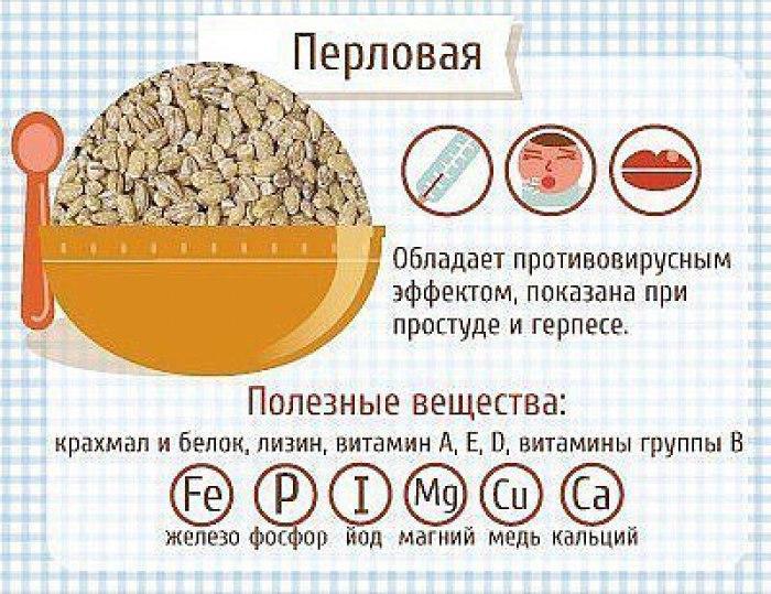 Полезные для здоровья каши и как их приготовить
